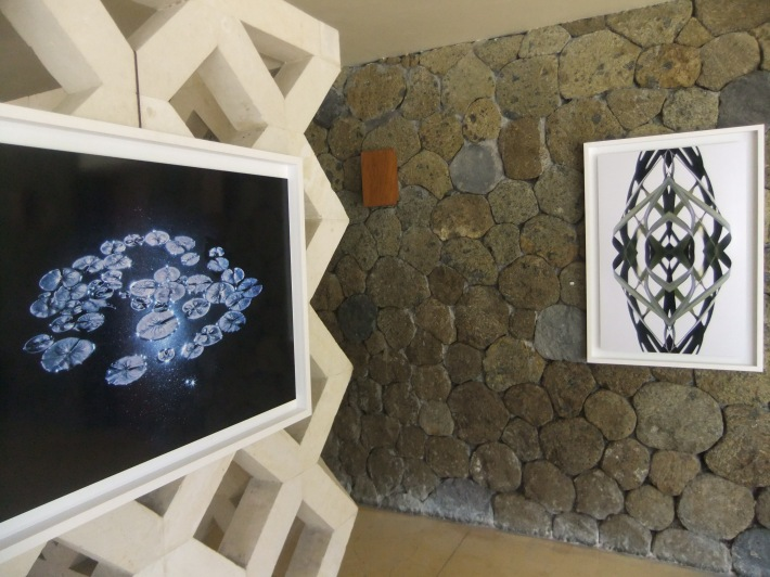 Digital images upon walls  by James Wilkin. Photo by Richard Horstman